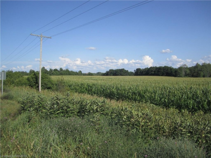 98 acres of land in Grey County