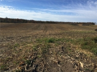128 acre farm in Bruce County